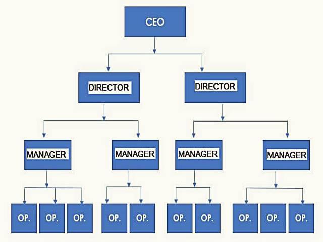 pengertian struktur organisasi jenis \u0026 fungsi [lengkap!] Contoh Struktur Organisasi Perusahaan Retail